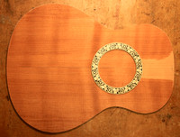 The curly redwood top
